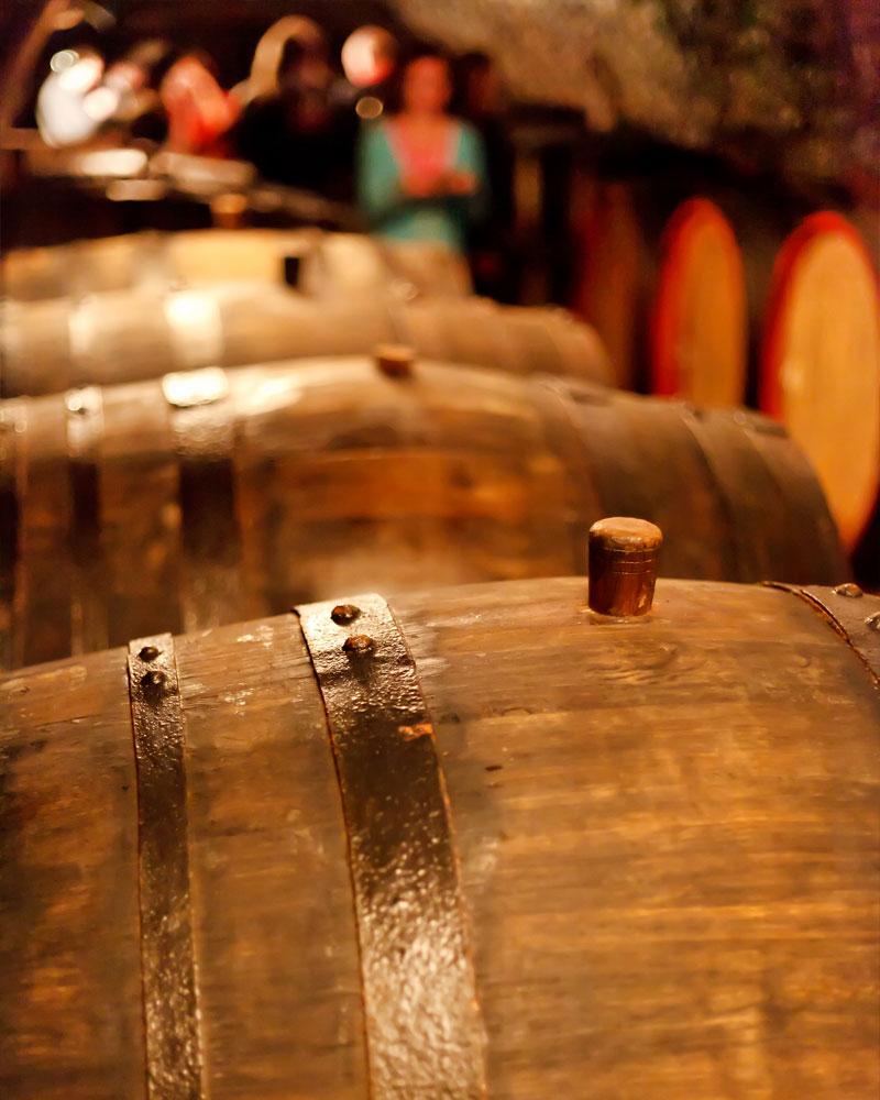 produzione e vendita di vini di alta qualità in salento