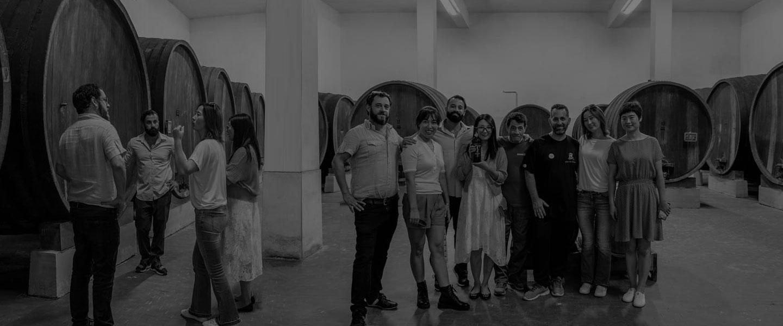 produzione e commercializzazione- vini pregiati puglia
